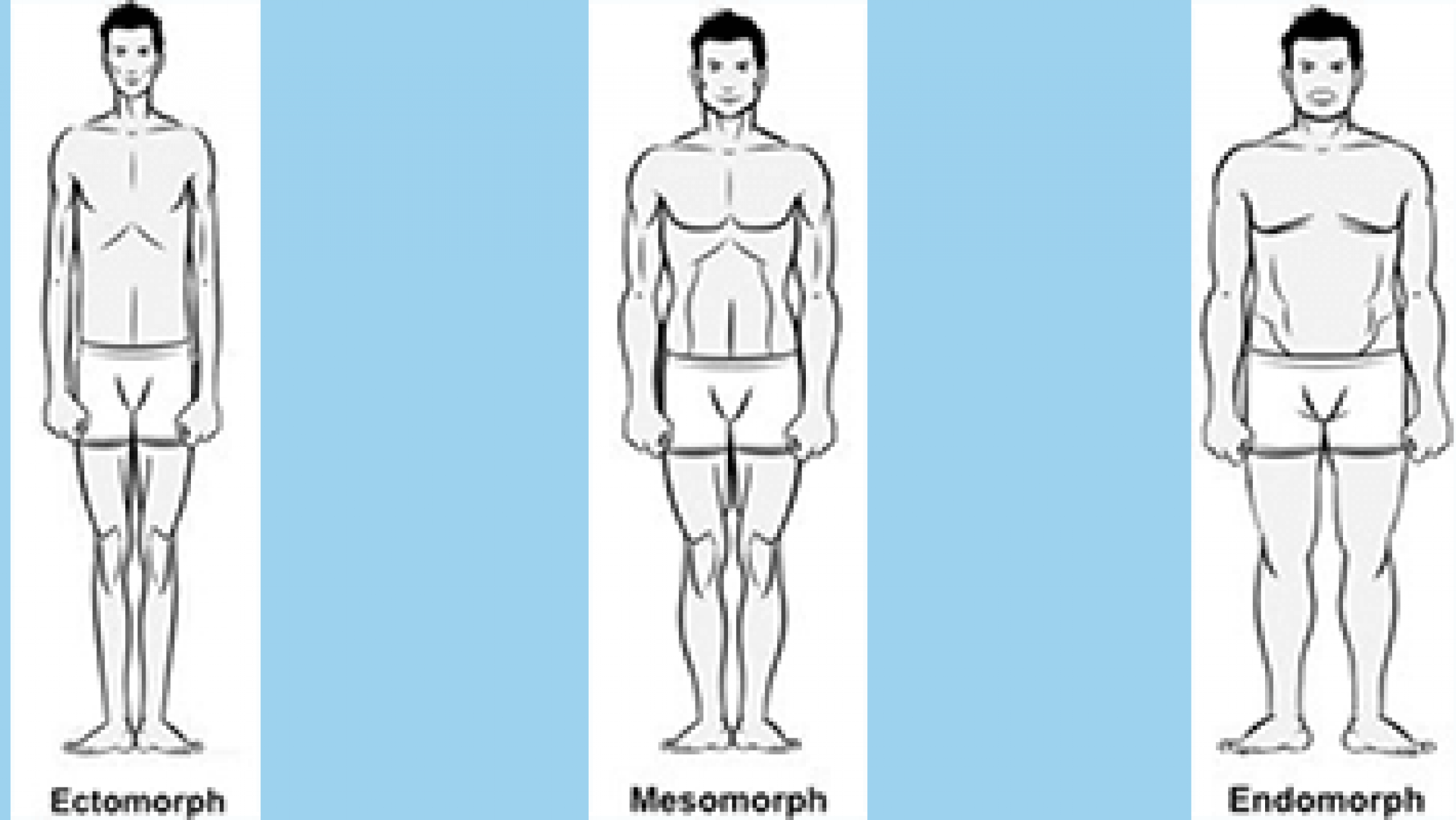 xtra-fit-blog-bodytype-banner.png